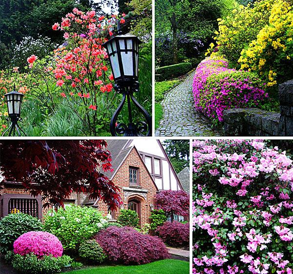 Цветники Портленда