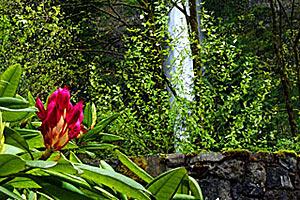 Орегон - край красивых величественных водопадов