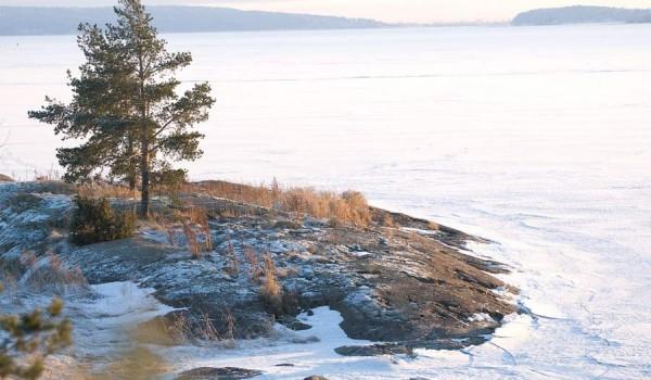 Карельский зимний этюд (фото: jeffinmoscow).