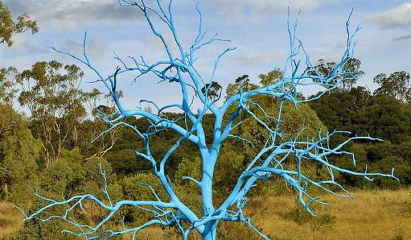 Покрашенное высохшее дерево в Mount Annan Botanical Gardens (Австралия).