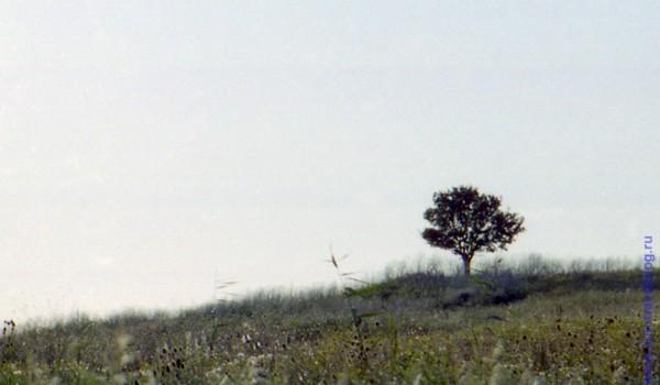 По дороге через Тамань в сторону Азовского моря. 1997 год.