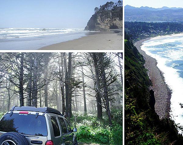 Чем дальше отъезжаешь от трассы, тем красивее природа океанского побережья