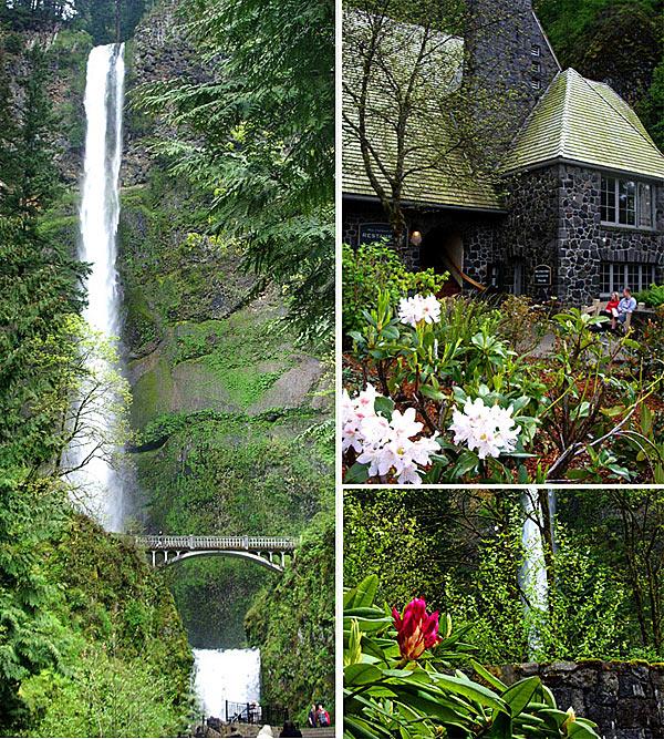 Величественная красота водопада Мултномах