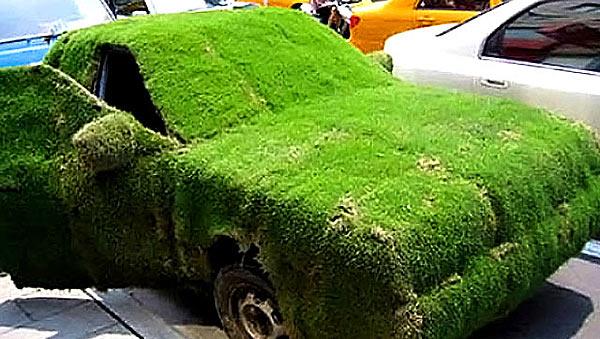 Автомобильный кузов с травяным покрытием - www.darkroastedblend.com