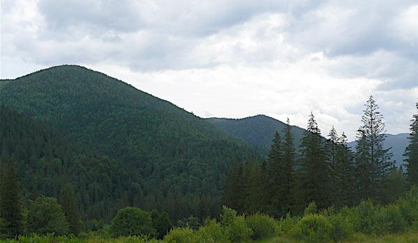 Хребет горы Яворник