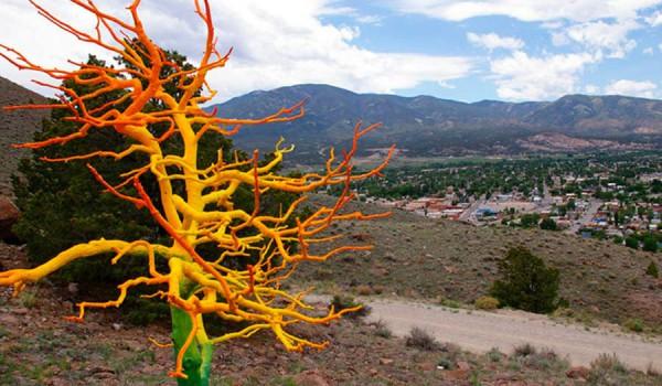 Творчество Curtis Killorn, штат Колорадо.
