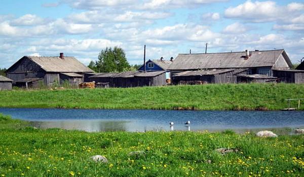 Деревня Саунино. Архангельская область. 2011 год.