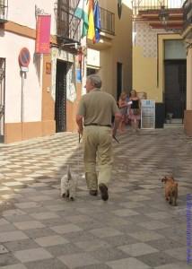 Заметки о бытовой Испании. 2011 год.