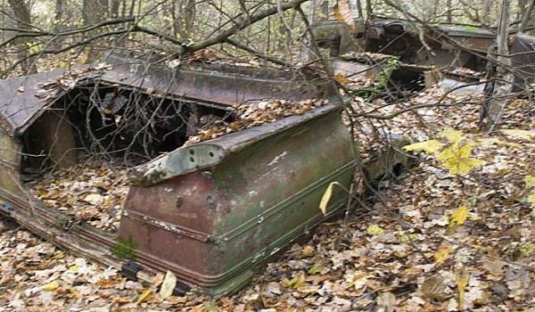 """Микроавтобус """"Старт"""" - найденный в лесу под Киевом кузов."""